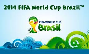mundial de fútbol Brasil 2014 asistencia en viaje