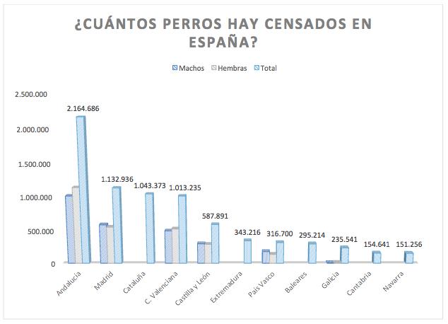 Cuántos perros hay en España? - Almudena Seguros Blog